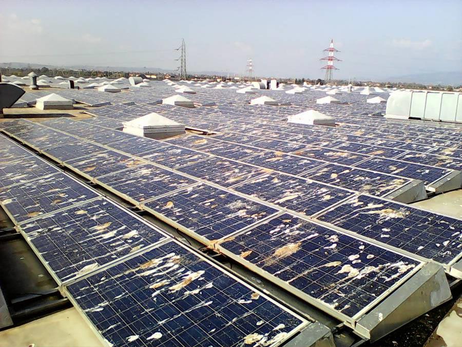 Eine Photovoltaik Reinigung VW Werk Verona bitter nötig